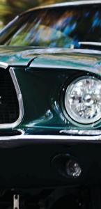 Bill Shepherd Mustang  cover image