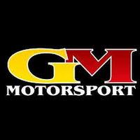 GM Motorsport  logo image