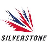 Silverstone logo image